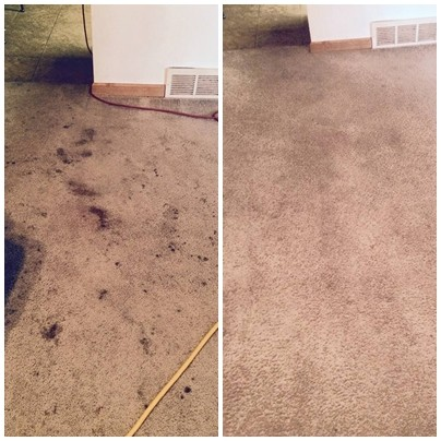 Carpet Cleaning Pristine Carpet Cleaning 303 993 6751